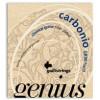 Galli GR90 Genius Carbonio - struny do gitary klasycznej