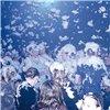 American DJ Snow Flurry - wytwornica śniegu