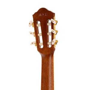 Ibanez AEG10NII-NT - gitara elektro-klasyczna